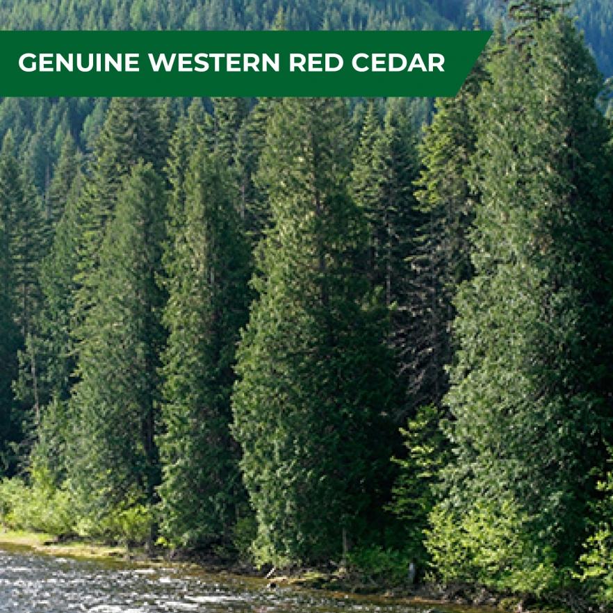 Cedar garden shed genuine cedar
